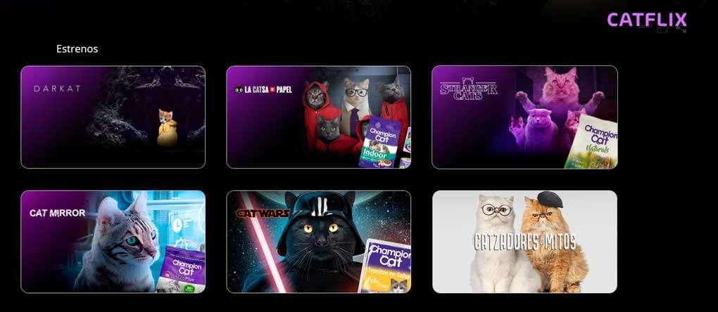 Dato inútil, existe un Netflix de gatos