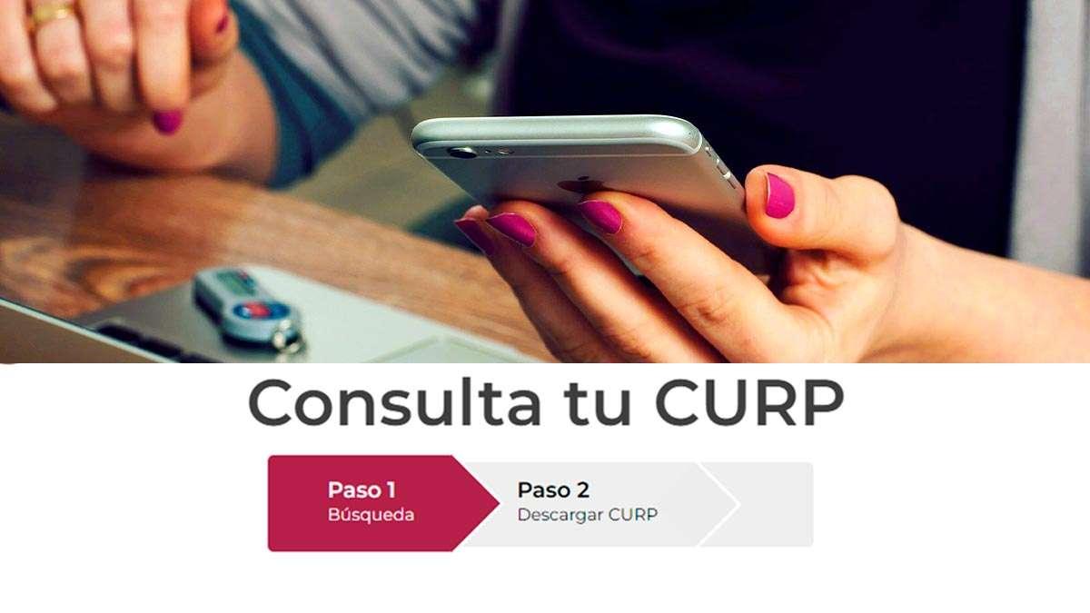 Consulta tu Curp en línea, desde el teléfono móvil o computadora