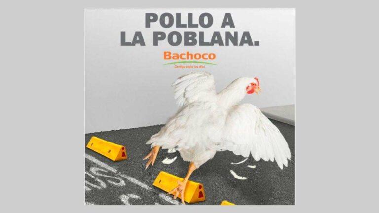 «Pollo a la Poblana» convierte en «Memisa» a Bachoco | Los mejores memes