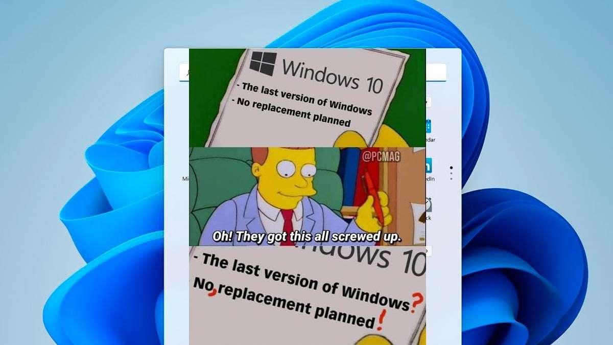 memes windows 11