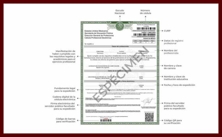 SCJN ratifica validez de cédula profesional electrónica